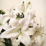 リング葬百合の花束