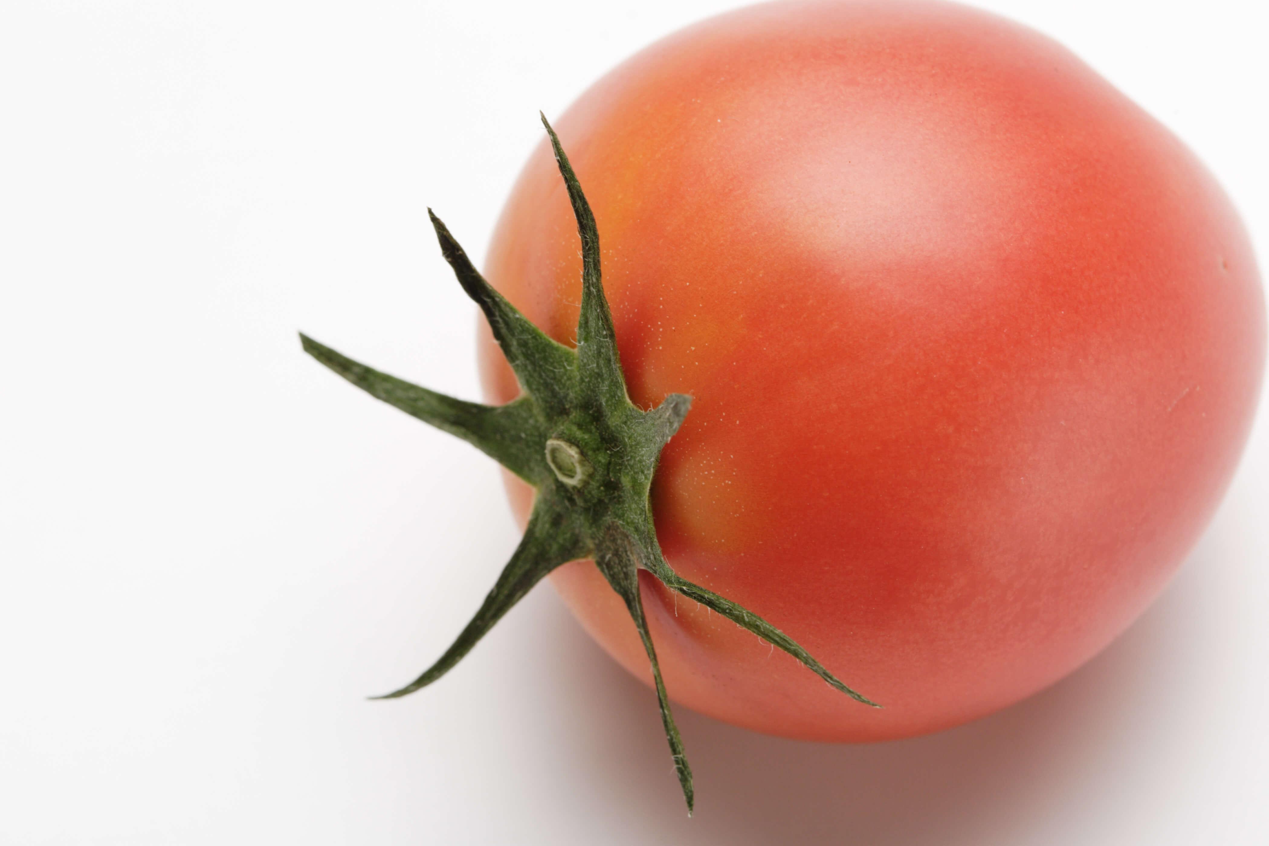 力石は一日トマト一個